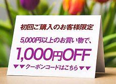 初回購入者限定2,000円OFFクーポンプレゼント