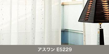 アスワン E5229